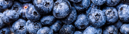 Surface is covered with a thick layer of blueberries. Natural background. Concept Healthy Food. Diet Nutrition . Top View.Single Banner. selective focus. Imagens