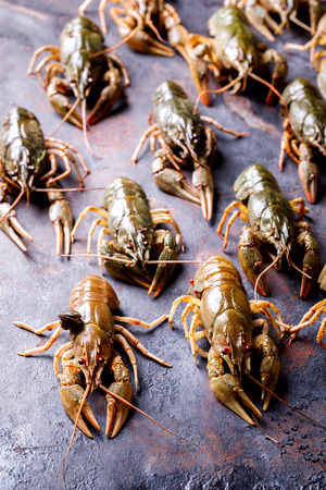 Crayfish Raw,Baby lobster.Background Seafood.Diet Nutrition Concept. Stock Photo
