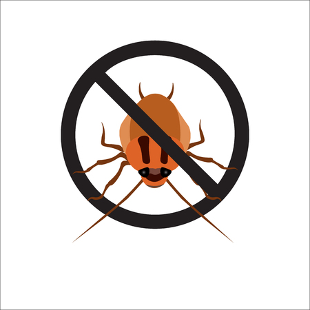 hairy legs: Illustration redhead cockroach on white background. Vector illustration