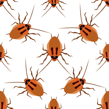 antennae: Seamless pattern cockroach on a white background. Cockroach beetle isolated vector Illustration