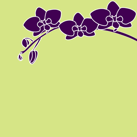 Stylized orchid branch on color background pistachios. Vector illustration