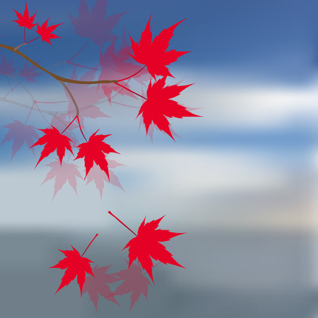 japanese maple: Red maple leaves on the branches. Japanese red maple against the blue sky and sea. Landscape. Vector illustration
