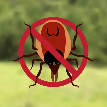 parasite: Warning Symbol parasite sign. The woods can be mites. Red mite. Epidemic. Mite parasites. Background from green forest. Vector illustration