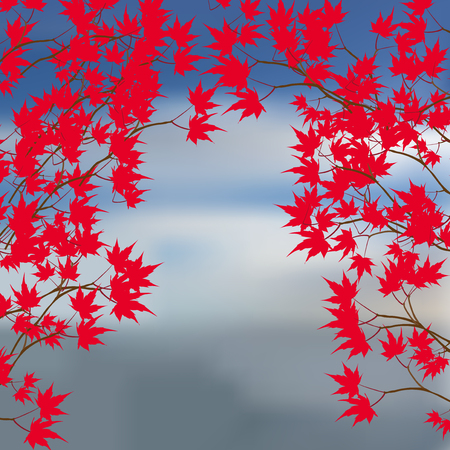 either: Greeting card of the autumn landscape. Red maple leaves on the branches on either side. Japanese red maple on a background of the sea. Vector illustration Illustration
