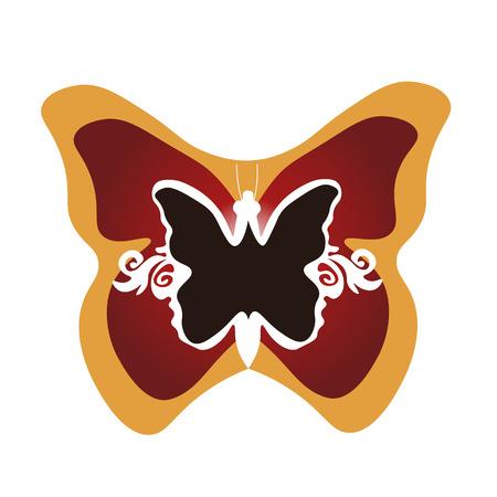 butterfly framed  illustration