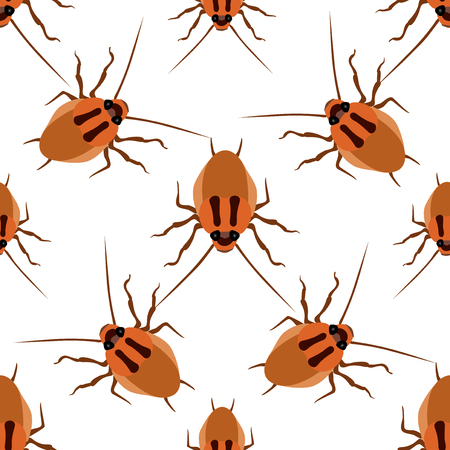 Seamless pattern cockroach on a white background. Cockroach beetle isolated Stock Photo