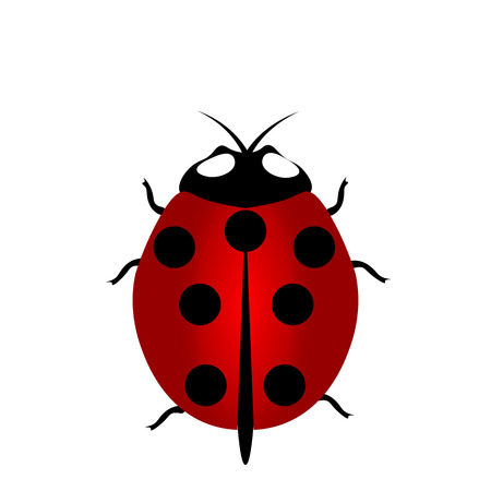 ladybird: ladybird icon, ladybird icon , ladybird icon , Illustration red Ladybug with seven points on the back Stock Photo