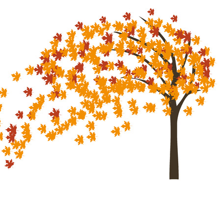 Autumn maple tree in the wind  illustration