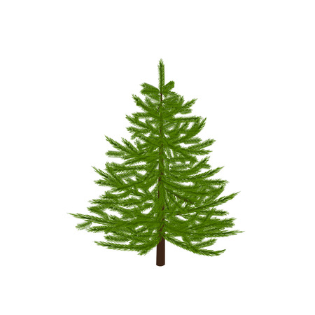 a sprig: Green fir tree. Christmas symbol. New Year. On a white background isolated.  illustration