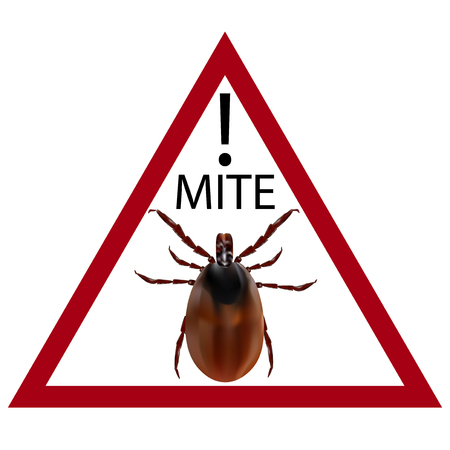 carefully: Warning sign. Carefully harvest bug.  illustration