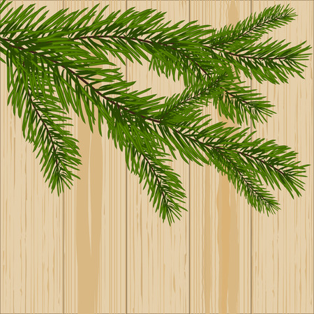 Two green spruce branches on the background of wood.  illustration
