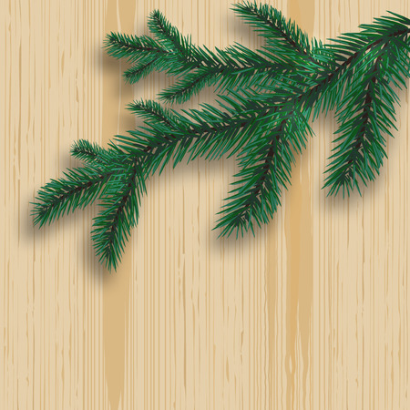felicitation: Green realistic fir tree branch and its shadow. On the background of wood. Pine board.  illustration