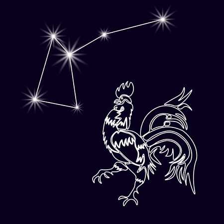 predominance: Rooster Constellation. Realistic star. White cock, rooster 2017. Horoscope. Tattoo. Made with a predominance of white on a dark background.  illustration