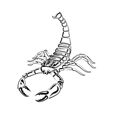 Escorpión blanco y negro agresiva para los tatuajes, signo del zodiaco. Hecho con predominio de blanco. ilustración