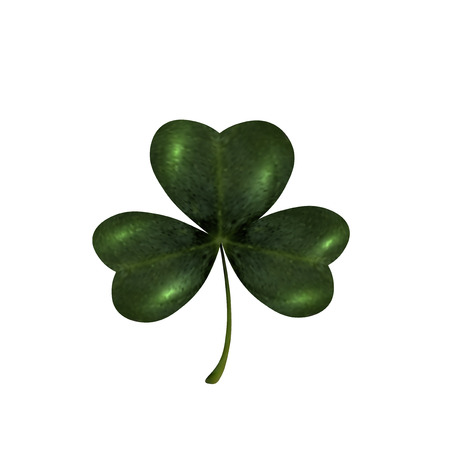 st patrick s day: Trifoliate clover. The symbol of St. Patrick s Day. Isolated on white background. Vector illustration Illustration
