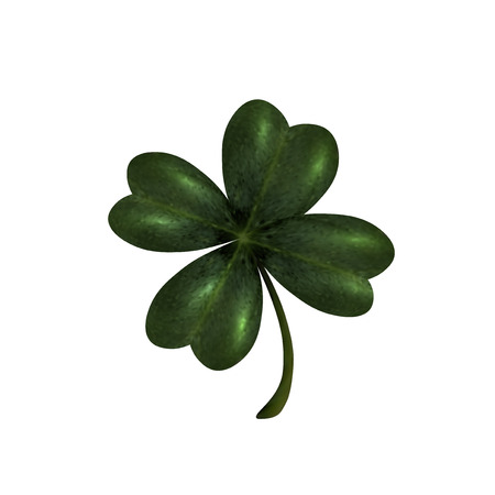 st patrick s day: Four-leaf clover. The symbol of St. Patrick s Day. Isolated on white background . Vector illustration