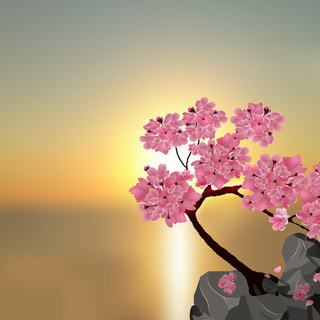 Lush Japanese Sakura. Tree pink cherry on the stone. Against the backdrop of a beautiful sunset. Vector illustration Illustration