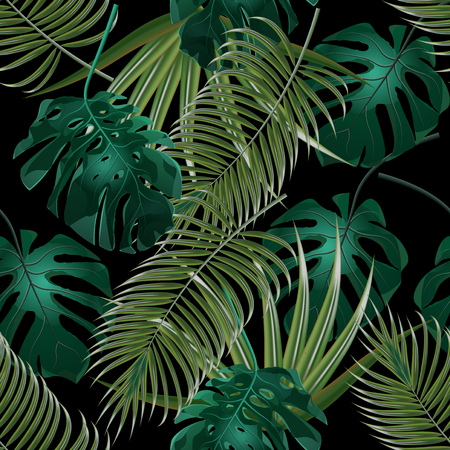 thickets: Jungle thickets of tropical palm leaves. Seamless floral pattern. Isolated on a black background.  illustration