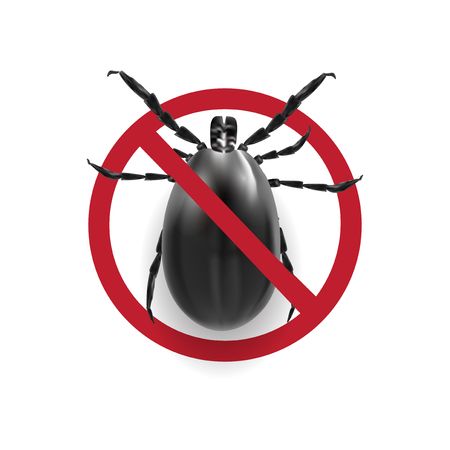 Warning sign in black and white.. Harvest bug on a white background with shadow. illustration Stock Photo