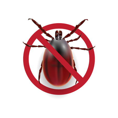 Warning sign. Harvest bug on a white background with shadow. illustration