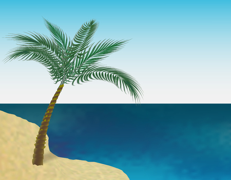raster: A tropical green palm tree on the sandy beach of the sea. Isolated on white background. illustration