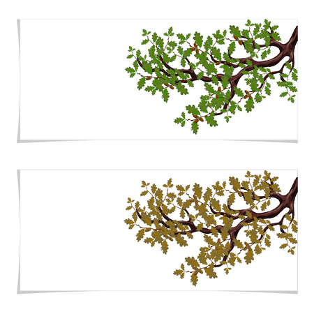 Green and autumn, a yellowed branch of a large oak tree with acorns. Flyer, invitation card or business card. Isolated on white background. illustration