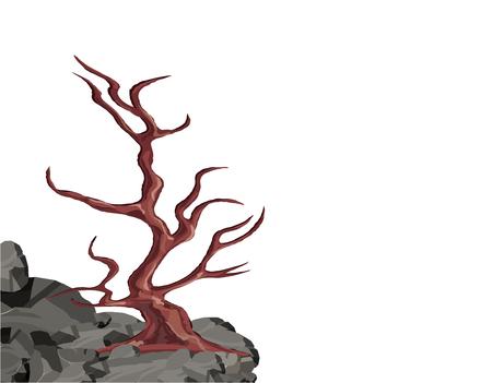 바위에 나뭇잎없이 곡선 된 나무입니다.