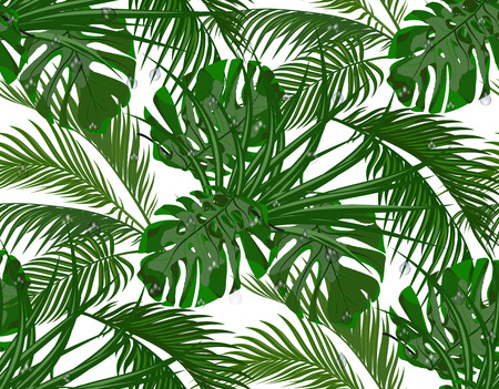 Jungle lush green. leaves of tropical palm trees, monstera, agaves. Seamless. Isolated on white background. Vector illustration.