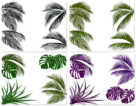 Sets of colorful leaves of tropical palm trees. Monster, agave. Isolated on white background. Vector illustration