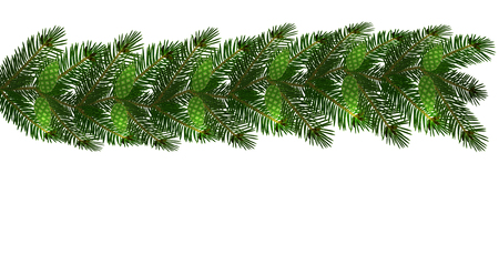 Christmas. New Year s decorations in the form of lambrequins with cones. Green tree branches on a white background. Vector illustration