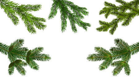 Christmas, New Year. Set from the five green realistic branch of fir or pine close-up. branched out. Isolated on white background. vector illustration Stock Illustratie