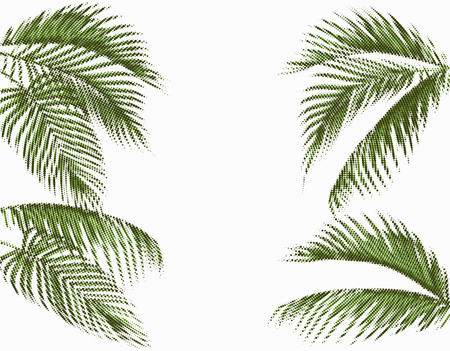 Different in shape tropical dark green palm leaves. Stylized dots design. Isolated on white background. Vector illustration Çizim