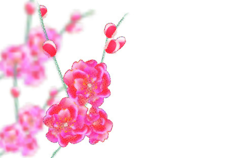 Branches with delicate pink flowers and buds. Sakura points. isolated on white background. Vector Illustration