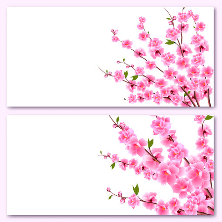 Sakura - two business cards. Decorative flowers of cherry with buds on the branches, a bouquet. Can be used for invitations, banners, posters. Vector illustration