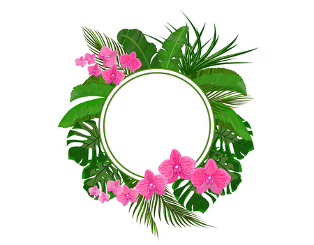 Set. Green tropical leaves of banana, coconut, monstera and ogawa. Pink Orchid. In a circle place for ads, advertising. Vector illustration Illustration