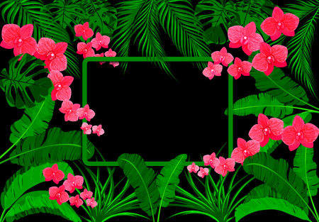 Green tropical leaves of banana, coconut, monstera and ogawa, Pink orchid. On a black background. Vector illustration
