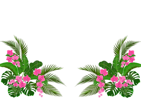 Set, bouquet. Corner drawing. Green tropical leaves of banana, coconut, monstera and ogawa. Pink Orchid. illustration Stok Fotoğraf