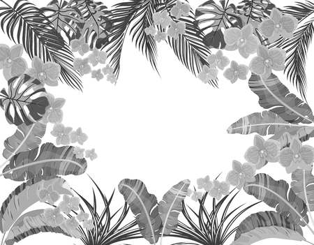 Tropical leaves of banana, coconut, monstera and ogawa, pink orchid in black and white version. Place for advertising, advertising.  illustration