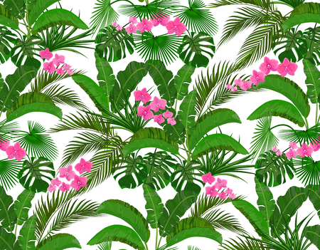 Green tropical leaves of banana, coconut, monstera and ogawa, Pink orchid. Seamless  illustration Stok Fotoğraf