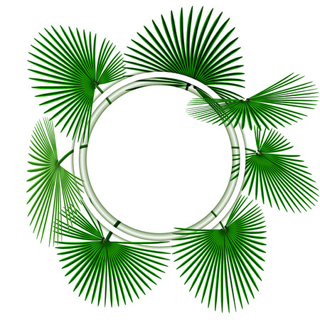 Green tropical palm leaves. In the circle. Advertising space.  illustration Stock Photo