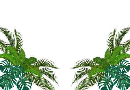 The green leaves of the tropical palm trees are symmetrical on the sides. Monstera, agave, banana. illustration