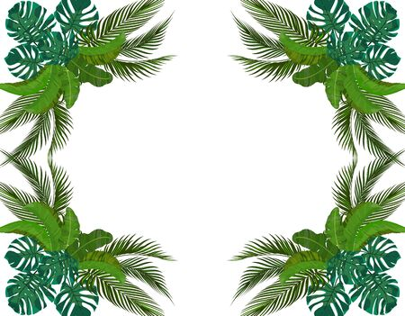 Green Leaves of tropical palm trees symmetrically. Bouquets. Monstera, agave, banana. illustration