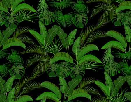 Green leaves of tropical palm trees. Monstera, agave, banana. Seamless on the black background. illustration
