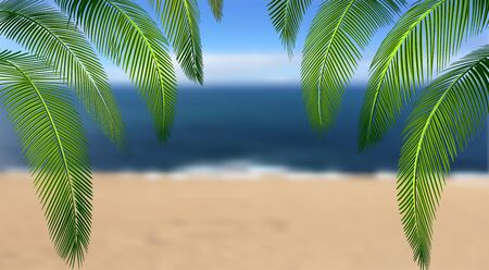 Tropical Various forms of green palm leaves. On the background of a summer landscape, sea, sand.  illustration