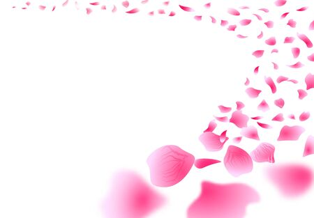 Sakura Close-up of flying petals. Flowers design. Isolated on white background Rose Petals Flowers. Vector illustration