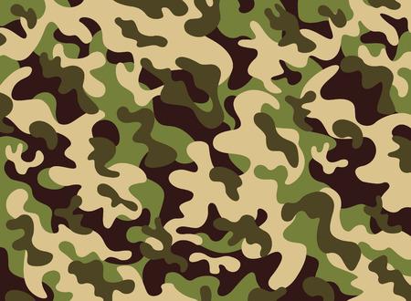 Camouflage  Standard-Bild - 40314630