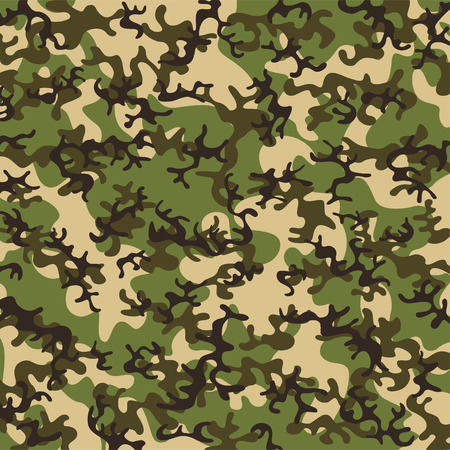 concealment: Camouflage pattern Illustration
