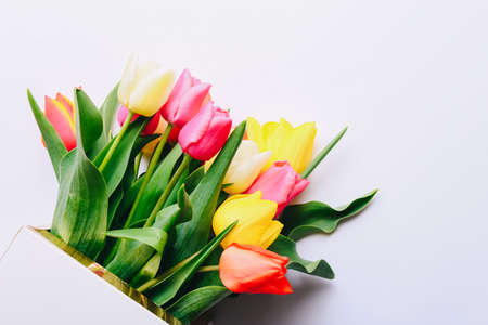 Beautiful tulips in bouquet lying on white background, top view