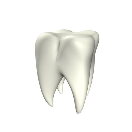 3d illustration looks clean tooth at the white background. Stock Illustration - 5791758