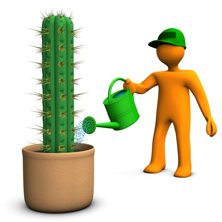 nurseryman: Orange cartoon character watering a big cactus, San Pedro, on the white background